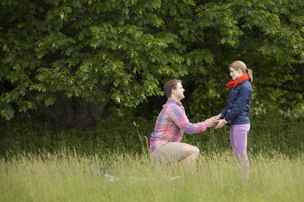 Ryan proposes to Mary at the National Arboretum in Washington, DC May 17, 2014.