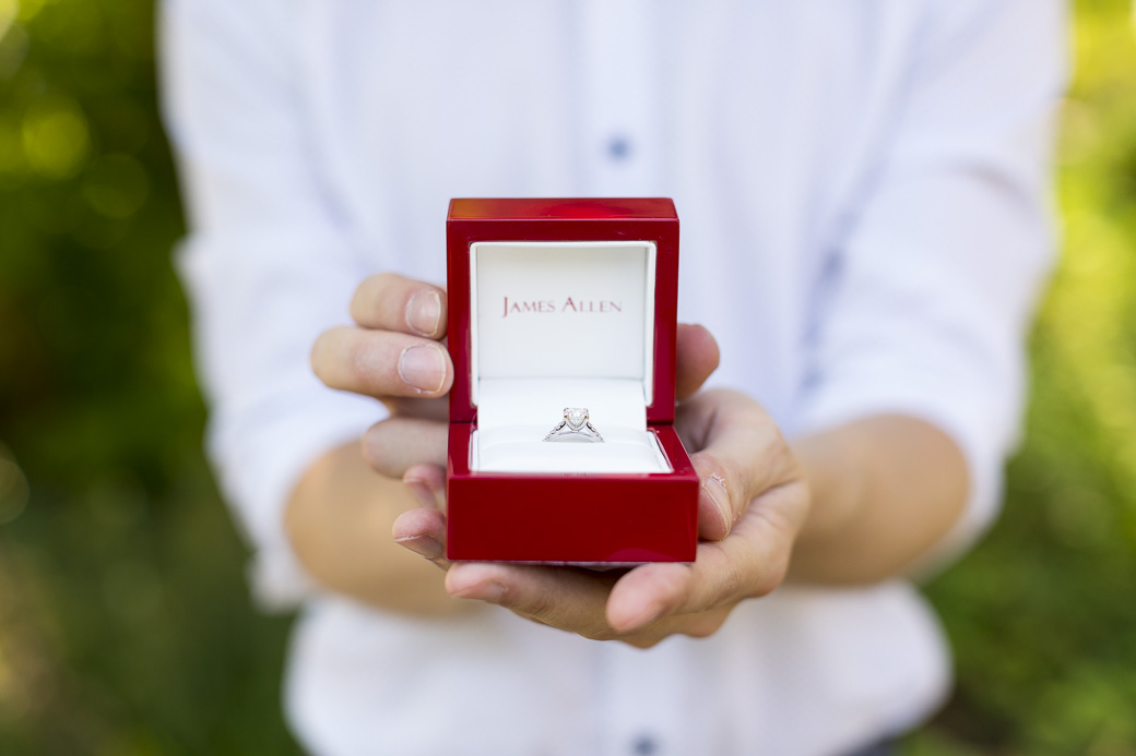 Dan's proposal to Tuesday at the Bishop's Garden at the National Cathedral in Washington, DC. August 16, 2015.