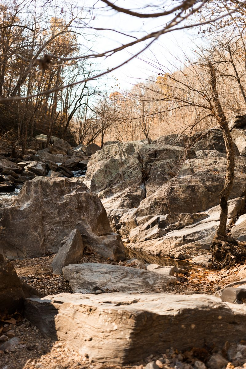 rocky riverbank at difficult run trail in mclean virginia